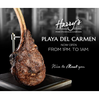 Galería de Restaurante  Harry's Playa del Carmen