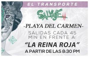 Transporte Salvaje 3 @ Playa del Carmen