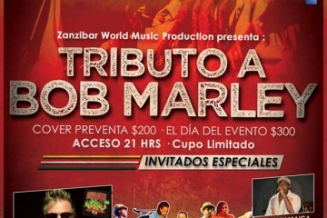 Tributo a Bob Marley @ Sr. Frogs