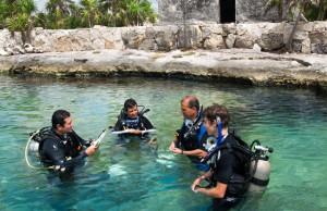 Buceo y snorquel en puerto aventuras