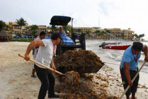 Sargazo en Playa del Carmen