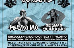 Playa del Carmen Hip Hop Festival