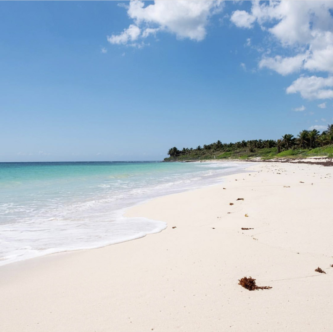 Xcacel - Viva Playa