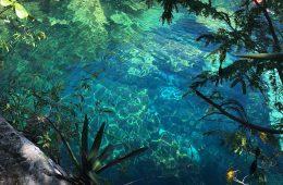 Cenote Cristalino Playa del Carmen Riviera Maya