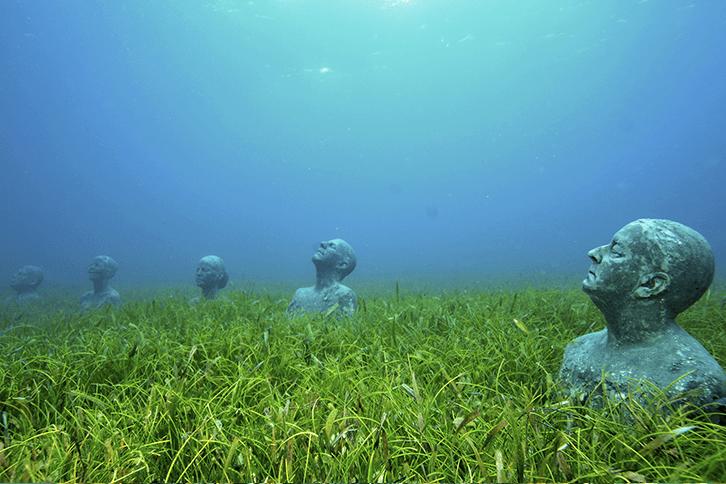 MUSA Cancun Isla Mujeres - Viva Playa