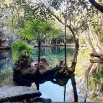 Cenote Chikin Ha - Viva Playa