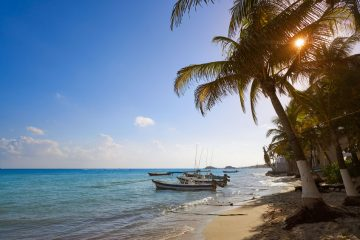 Playa del carmen reciclaje - Viva Playa