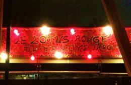 Le Lotus ROUGE pLAYA DEL cARMEN - Viva Playa