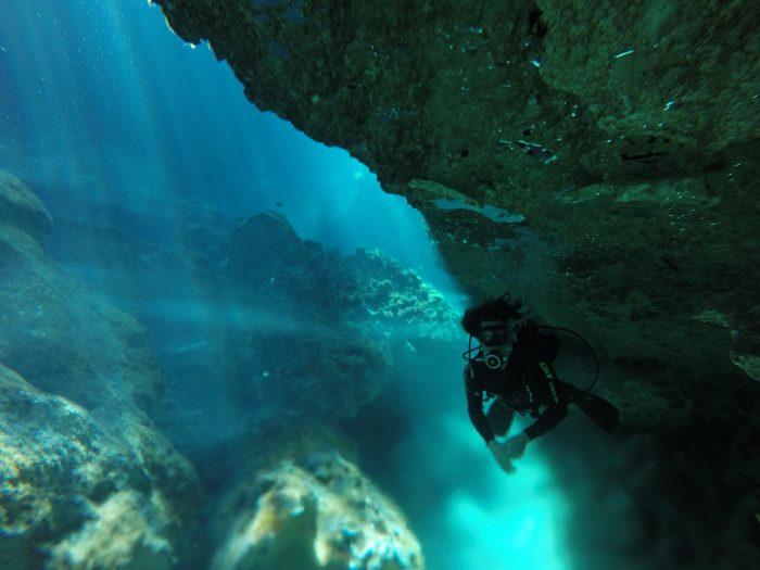 buceo en cenotes Playa del Carmen - Viva Playa