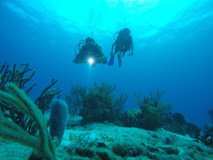 Buceo en Playa del Carmen para principiantes